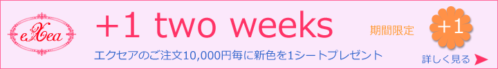 +1 two weeksのご案内